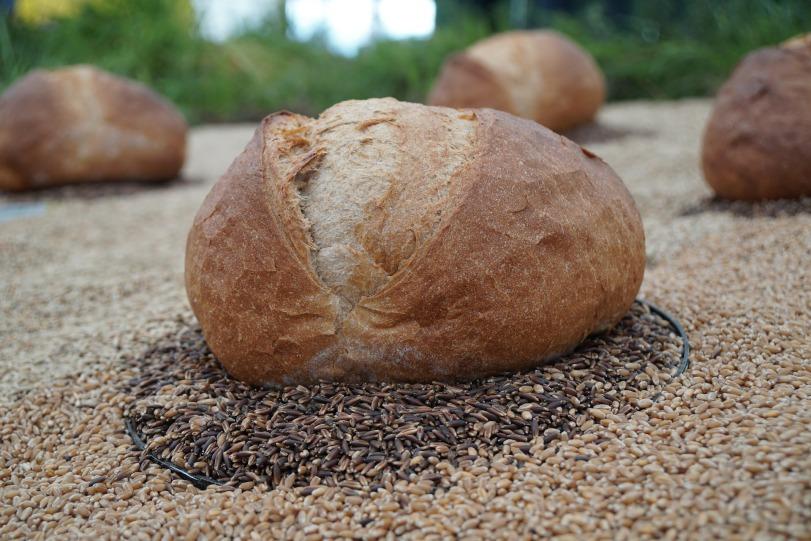 bread-3342835_1920